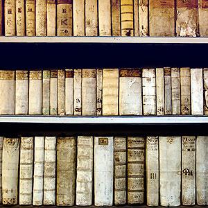 картинка Поиск церковной метрической записи за XIX век от магазина Доступная генеалогия