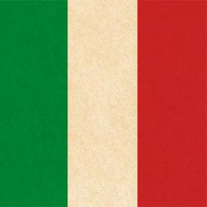картинка Поиск итальянских корней от магазина Доступная генеалогия