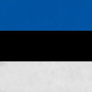 картинка Поиск эстонских корней от магазина Доступная генеалогия