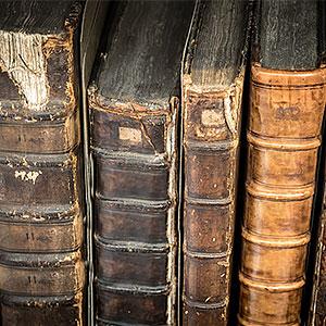 картинка Поиск информации издомовых книг от магазина Доступная генеалогия