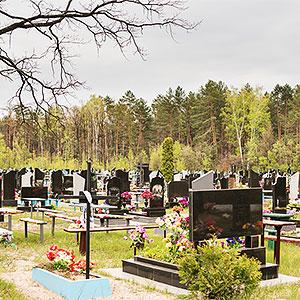 картинка Фотофиксация могилы родственников от магазина Доступная генеалогия
