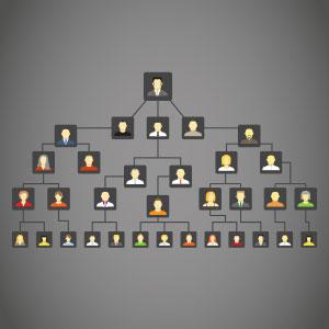 картинка Программа для создания генеалогического древа от магазина Доступная генеалогия
