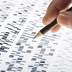 картинка Консультация специалиста поДНК-Генеалогии: что может дать анализ ДНК? от магазина Доступная генеалогия