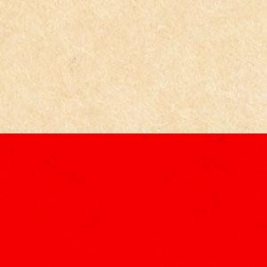 картинка Поиск польских корней от магазина Доступная генеалогия